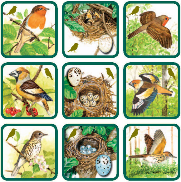 Znáš naše ptáky ?